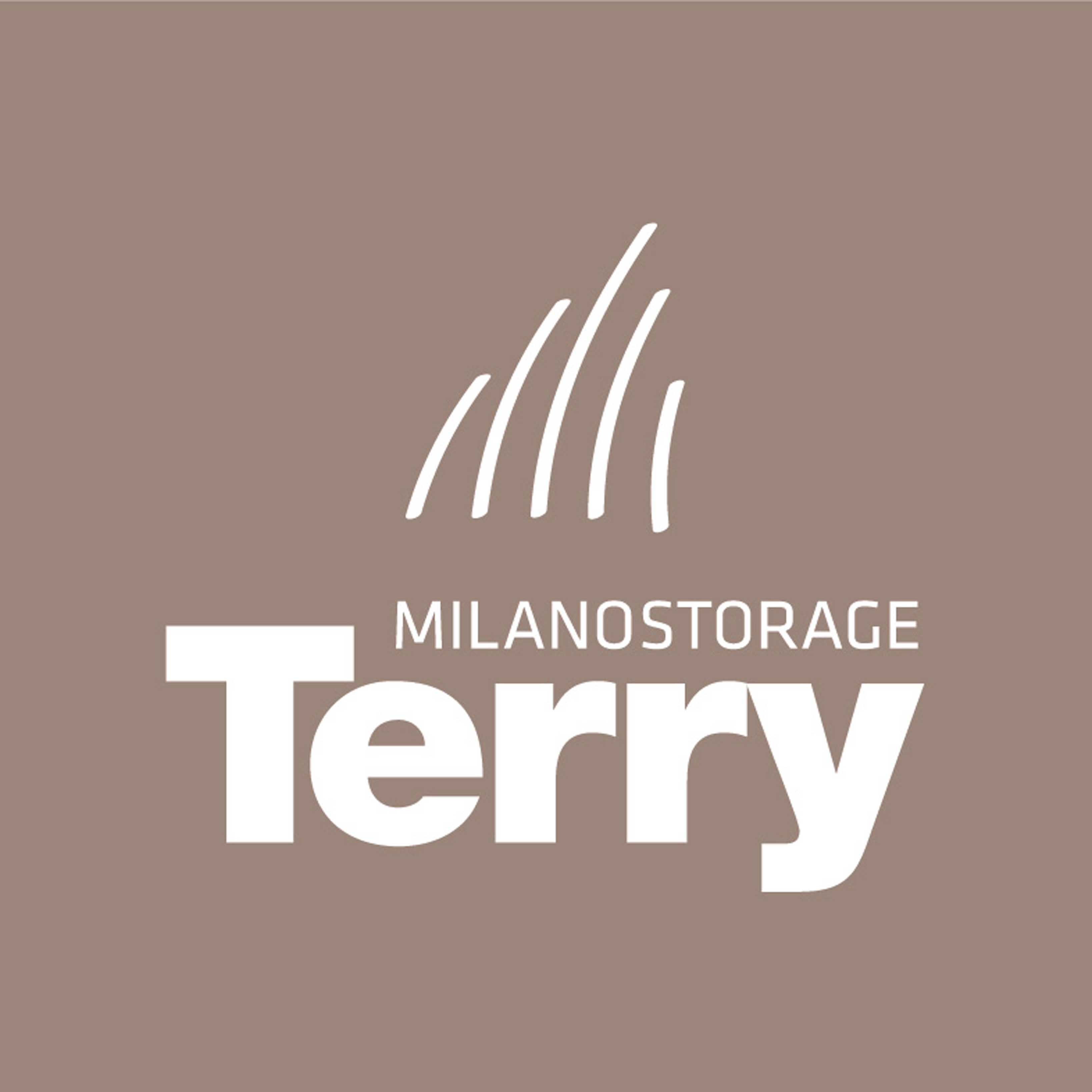 TERRY STORE LOGO